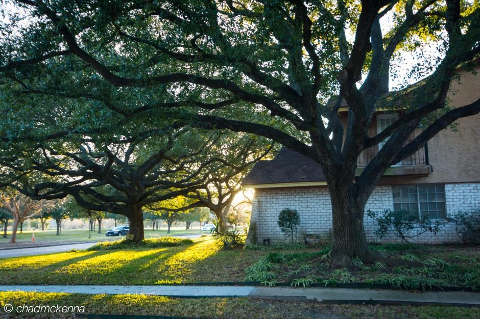 Houstonian House